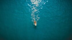 aerial view of kayaker