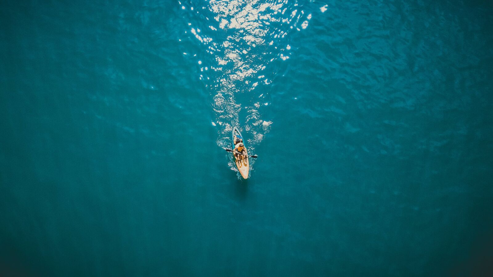 Enjoy a Kayaking Experience on Your Next Jekyll Island Vacation