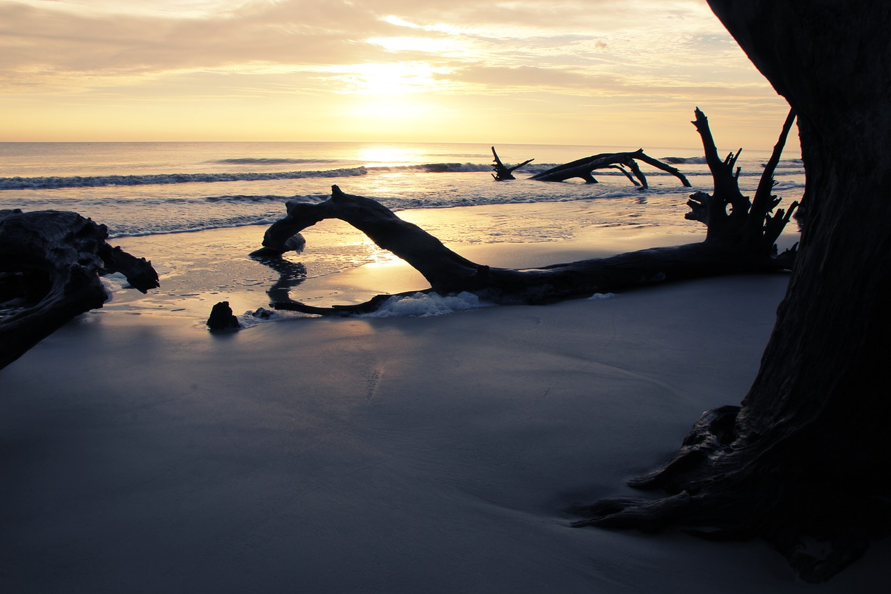 Why is Fall the Best Time to Visit Jekyll Island?